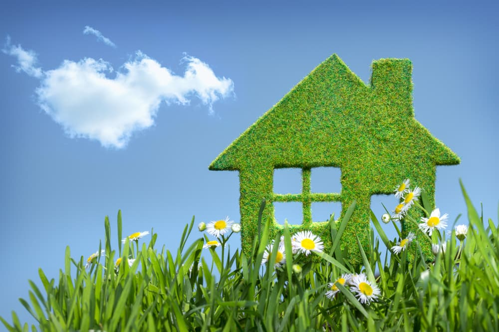 Ensure a Drier and Healthier Home